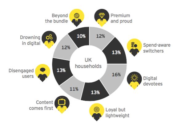 EY's segmentation of the digital household